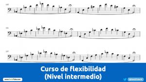 Flexibilidad nivel intermedio