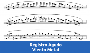 Curso de Registro Agudo para Viento Metal