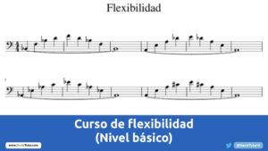Curso basico de flexibilidad para viento metal
